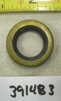 Briggs and Stratton Oil Seal Part# 391483