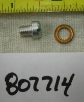 Briggs and Stratton Jet Screw Part# 807714